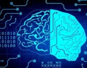 观点 | AI 完全模仿人类大脑是在浪费时间?