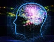 资本正在流向AI哪些领域,自动驾驶与AI芯片又发生了什么让人摒住呼吸?