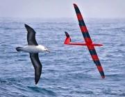 人工智能滑翔机来了,无人机该向它学点什么?