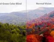 来自AI+光学技术的创新:如何用眼镜让色盲患者重新看到世界的色彩?